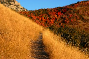 gory jesien 300x199 Jesienne wycieczki po górach   jak zadbać o własne bezpieczeństwo?